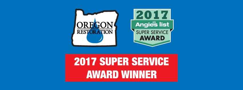 2017 Angies List Super Service Award Winner