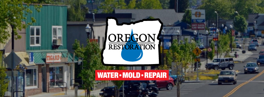 Oregon Restoration Co Tigard Oregon97223 97224